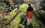 Herbstlaub zusammenkehren und kompostieren.