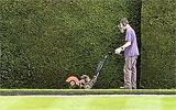 Rasenkanten pflegen.