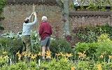 Rankhilfen für einjährige Kletterpflanzen bereitstellen.