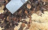 Kompost durchmischen und belüften.