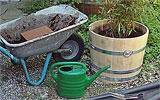Kübelpflanzen / Hauspflanzen umtopfen und düngen.