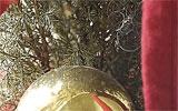 Weihnachtsbaum unten abschneiden.