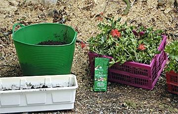Blumenkästen bepflanzen.