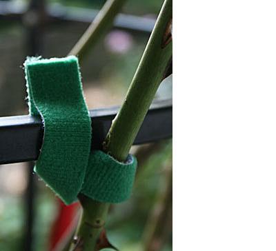 Garten-Klettband
