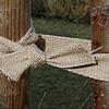 Baumband
