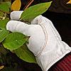 Ziegenleder Handschuhe